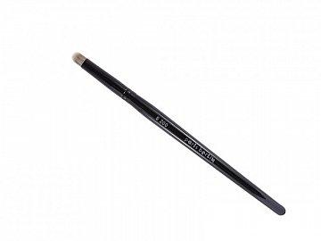 Dome Concealer & Lip Brush - S200